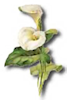 holiday_easter_icon