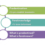 What is predestination? (Is it foreknowledge?)