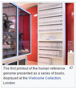 The first printout of the human reference genome presented as a series of books