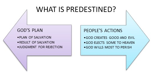 What is predestined? God's plan or people's actions